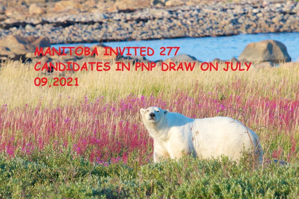 277 INVITATIONS IN MANITOBA PNP IMMIGRATION DRAW